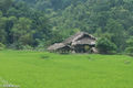 Ha Giang, Paddy, Residence, Thatch, Vietnam