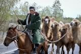 Camel,China,Horse,Kazakh,Xinjiang