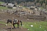 Cabin,China,Horse,Pen,Xinjiang