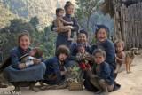 Burma,Dog,Eng,Shan State,Teeth
