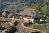 China,Residence,Roof,Thatch,Yunnan