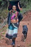 China,Dog,Hat,Yi,Yunnan