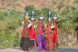 Bangle,Bracelet,Fetching Water,Gujarat,Head Scarf,India,Rabari