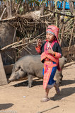 Apron,Earring,Laos,Loma,Necklace,Phongsali,Pig,Turban