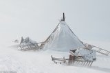 Russia,Sledge,Tent,Yamalo-Nenets