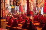 Arunachal Pradesh,Chanting,Drum,Drumming,Festival,India,Monk,Monpa