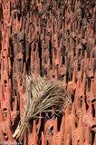 Grass Brush On Terracotta Horses