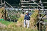 Farmer & Rice Drying Rack