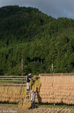 Farmers At Their Drying Racks At Sunset