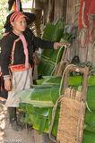 Apron, Earring, Hat, Lai Chau, Vietnam, Yao