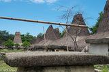 Grave & Peaked Roof Village