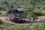Burma, Shan State, Thatch, Village