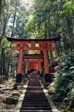 Gate,Japan,Kinki,Shrine,Stairway