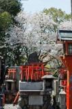 Japan,Kinki,Shrine,Statue