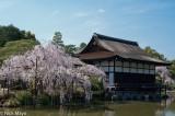 Garden,Japan,Kinki,Roof,Thatch
