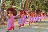 Burma,Nun,Pindacara,Sagaing Division,Umbrella