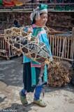 China,Guizhou,Hat,Market,Miao,Pig,Shoulder Pole
