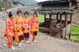 Apron,China,Guizhou,Hair,Miao,Pig,Wedding
