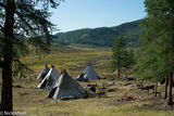 Dukha, Khovsgol, Mongolia, Reindeer, Tent