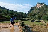 Digging, Ha Giang, Vietnam, Zhuang