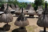 Ngadhu & Bhaga Ceremonial Shrines