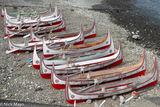 Tao Canoes