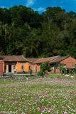 Flowers & Red Brick Farmhouse