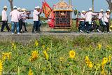 Sunflowers & Palanquin