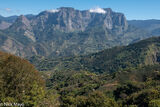 Tea Farms Below The Mountain Wall