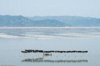 Coastal Fujian & W. Guanxi