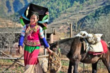 China,Horse,Pack Animal,Yi,Yunnan
