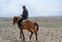 China,Herding,Horse,Kazakh,Sheep,Xinjiang