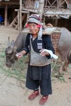 Woman Spinning Thread & Buffalo
