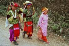 Burma,Festival,Nun,Palaung,Shan State