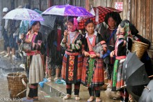 Lai Chau,Market,Miao,Shopping,Umbrella,Vietnam