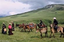 China,Festival,Horse,Sichuan,Tibetan