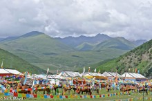 China,Festival,Festival Tent,Horse,Prayer Flag,Sichuan