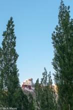 Behind The Poplars
