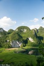 China,Guangxi,Paddy