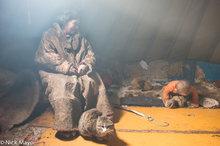Cat,Nenets,Russia,Yamalo-Nenets