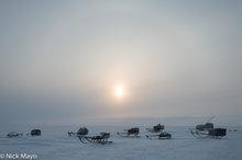Russia,Sledge,Yamalo-Nenets