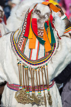 Tundra Woman In Best Yagushka