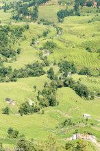 Stream Through The Rice Fields