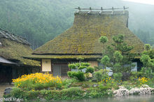 Thatched House In Rain