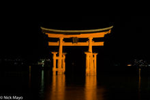 O-Torii At Night