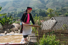 Apron, Earring, Hat, Lai Chau, Vietnam, Winnowing, Yao