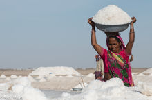 Gujarat, India, Salt Field