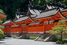 Japan, Kinki, Roof, Temple