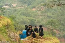 Ha Giang, Head Scarf, La Chi, Paddy, Thresher, Vietnam