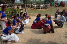 Bell, Dancing, Drum, Drumming, Festival, Nepal, Singing, Terai, Tharu